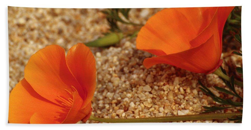 Poppy Bath Sheet featuring the photograph California Poppies by Karen Ulvestad