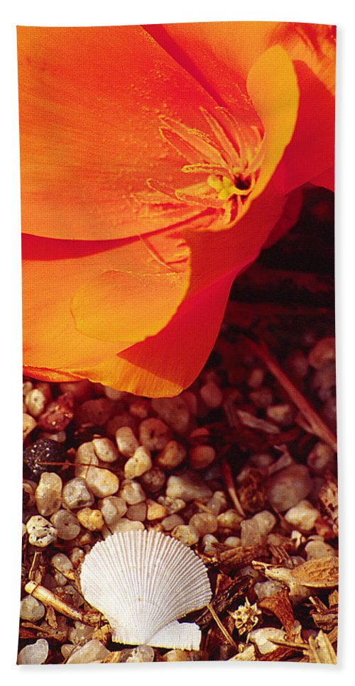 Poppy Bath Sheet featuring the photograph California Poppy And Scallop Shell by Karen Ulvestad