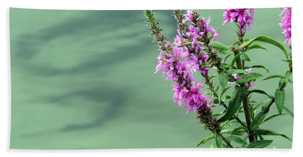 Flower Hand Towel featuring the photograph Calm by Jo Hoden