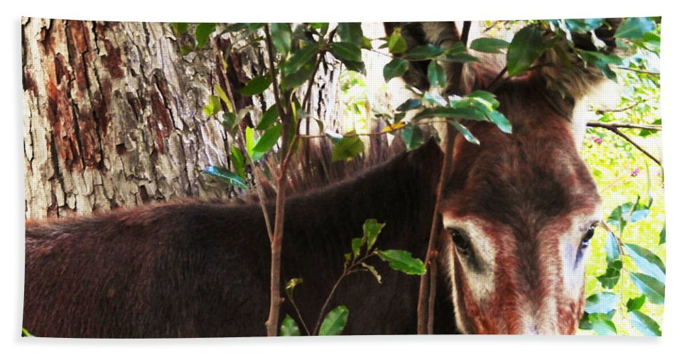 Equine Hand Towel featuring the photograph Camera Shy Donkey by Jan Gelders