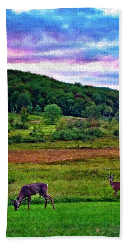 West Virginia Hand Towel featuring the photograph Canaan Valley Evening Impasto by Steve Harrington