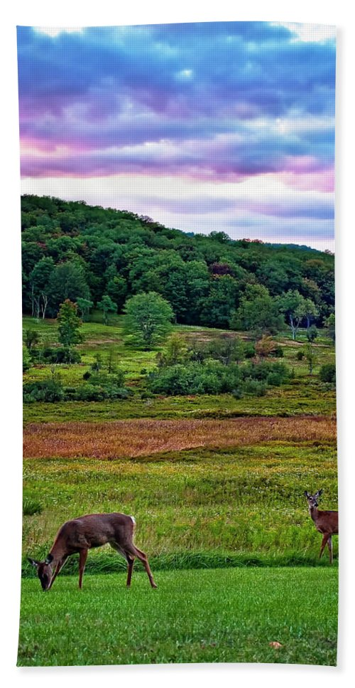 West Virginia Hand Towel featuring the photograph Canaan Valley Evening by Steve Harrington
