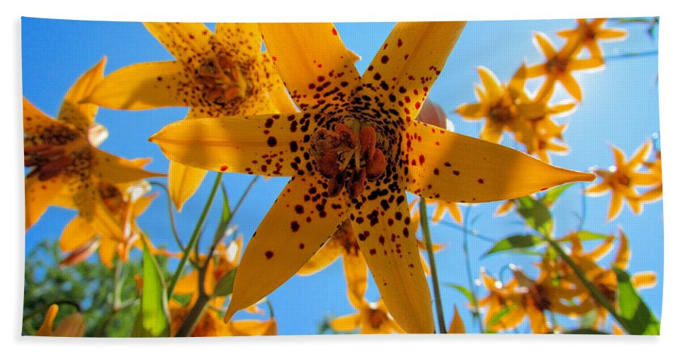 Canada Lily Hand Towel featuring the photograph Canada Lily by Elizabeth Dow