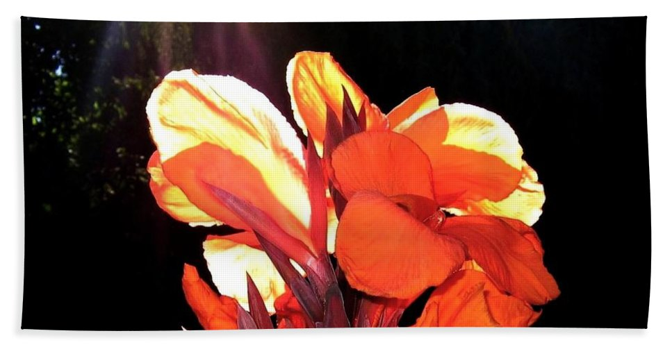 Canna Lily Hand Towel featuring the photograph Canna Lily by Will Borden