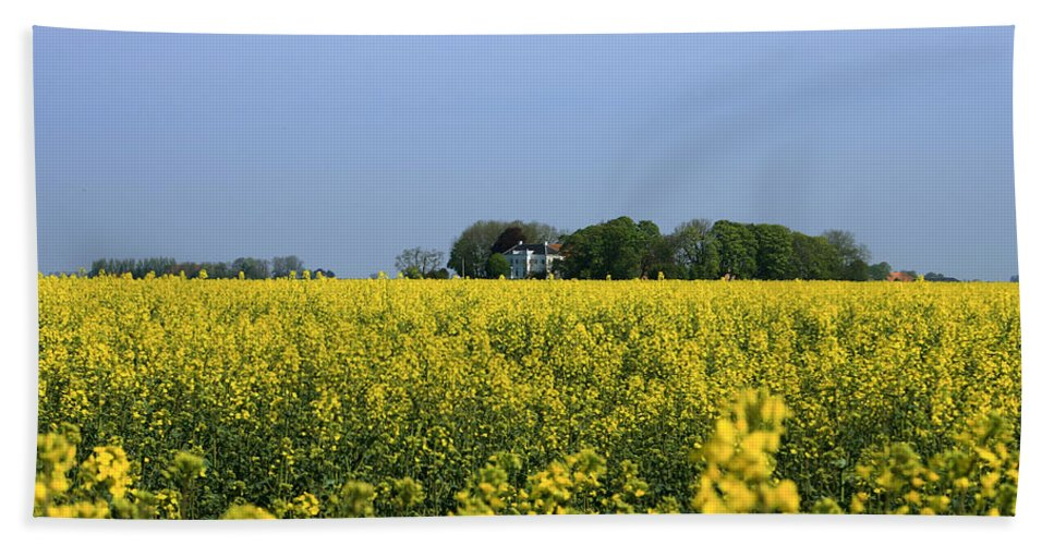 Canola Hand Towel featuring the pyrography Canola Field by Steve K