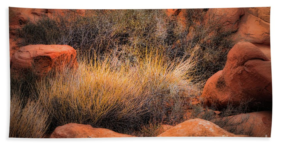 Grasses Bath Sheet featuring the photograph Canyon Grasses by Doug Sturgess