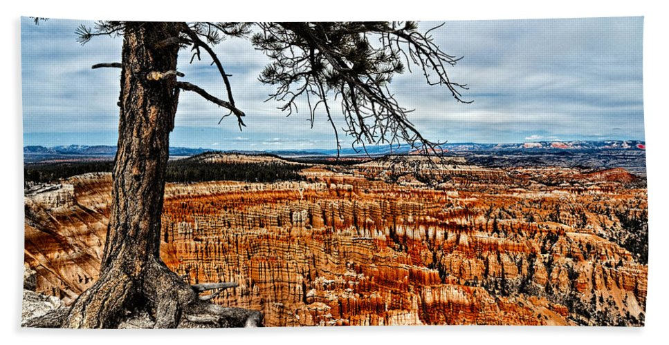 Art Hand Towel featuring the photograph Canyon Overlook by Christopher Holmes