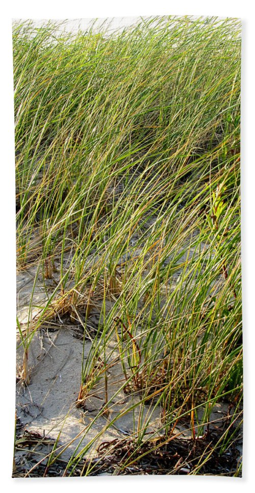 Cape Cod Bath Sheet featuring the photograph Cape Cod Beach 2 by Mark Sellers