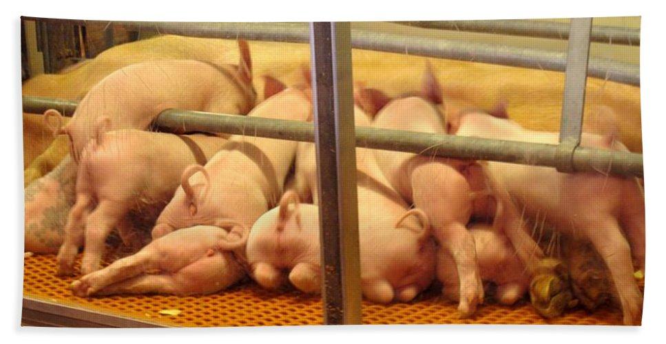 Pig Hand Towel featuring the photograph Capitalist Swine by Ian MacDonald