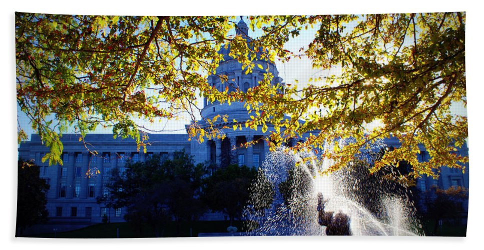 Capitol Bath Sheet featuring the photograph Capitol View by Cricket Hackmann