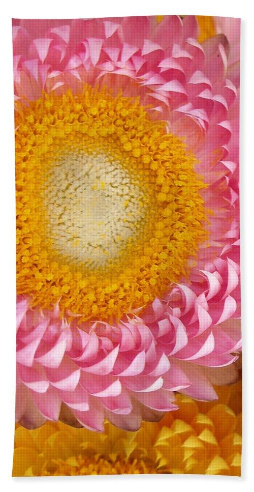 Flower Bath Towel featuring the photograph Carmel Flower by Sarah Madsen