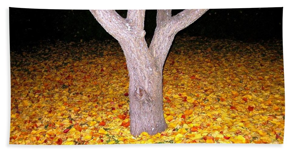 Apricot Leaves Hand Towel featuring the photograph Carpet Of Leaves by Will Borden