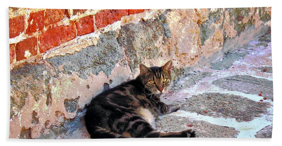 Cats Bath Sheet featuring the photograph Cat Against Stone by Susan Savad
