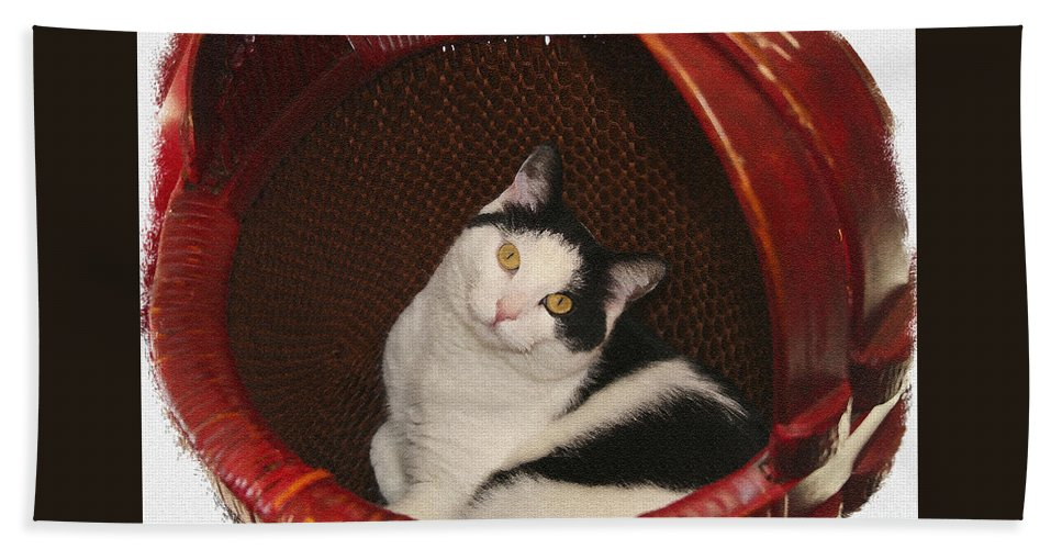 Cat Bath Sheet featuring the photograph Cat In A Basket by Margie Wildblood