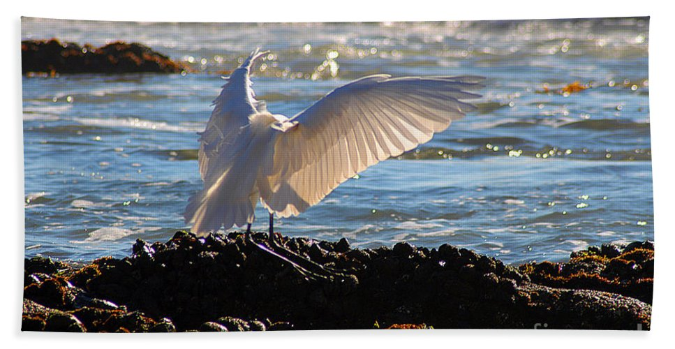 Clay Hand Towel featuring the photograph Catching Rays At The Beach by Clayton Bruster