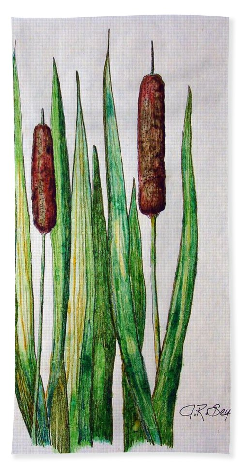 Cattails Hand Towel featuring the drawing Cattails 2 by J R Seymour