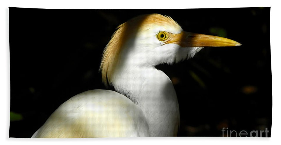 Cattle Egret Bath Towel featuring the photograph Cattle Egret In Shadow by David Lee Thompson