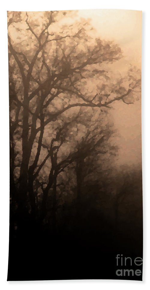 Soft Hand Towel featuring the photograph Caught Between Light And Dark by Amanda Barcon