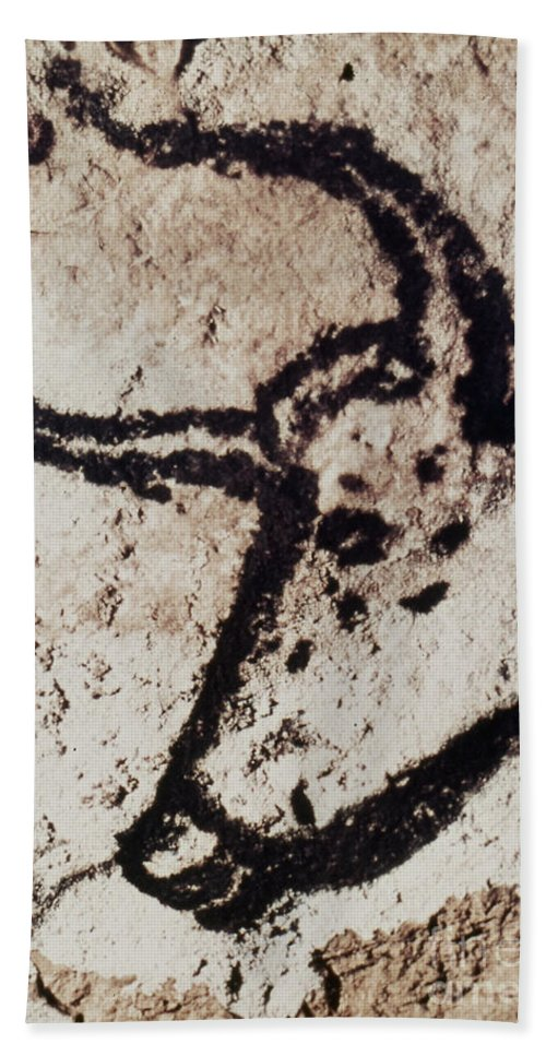 Bull Hand Towel featuring the photograph Cave Art: Lascaux by Granger