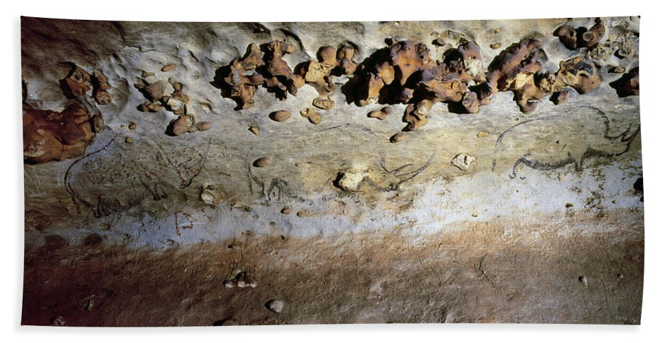 10 Bath Sheet featuring the photograph Cave Art: Rhinoceroses by Granger
