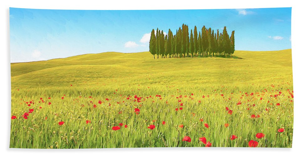 Cedar Grove Hand Towel featuring the painting Cedar Grove And Poppies by Dominic Piperata