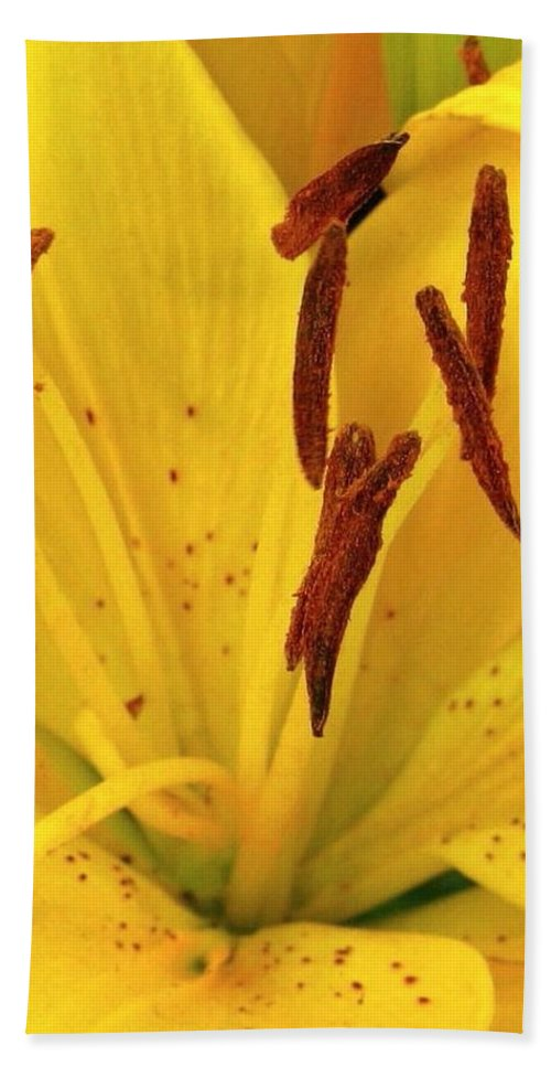 Lily Bath Sheet featuring the photograph Center Of A Lily by Rhonda Barrett