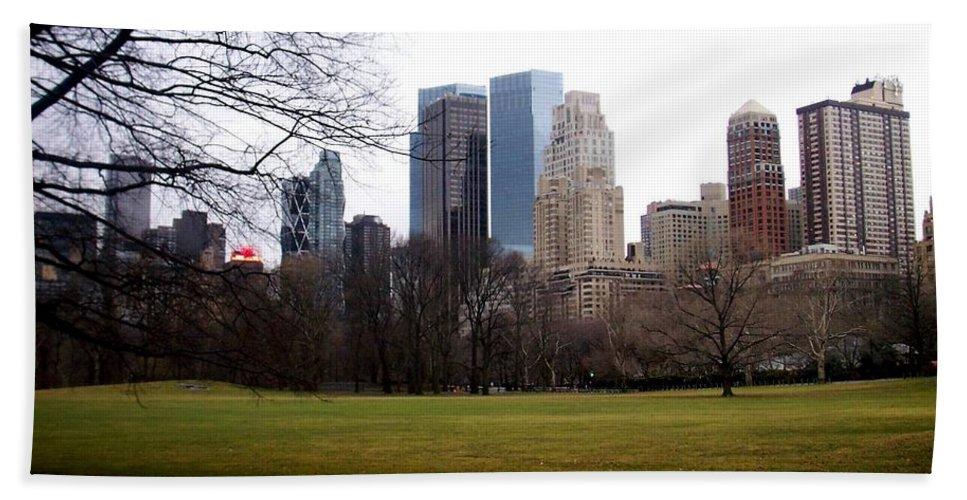 Central Park Bath Towel featuring the photograph Central Park by Anita Burgermeister