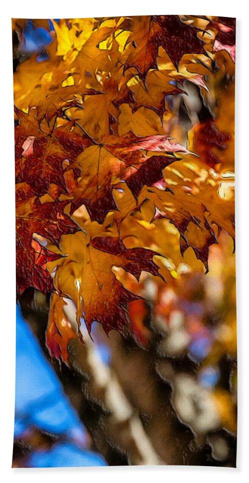 John Haldane Bath Sheet featuring the digital art Changing Maples by John Haldane