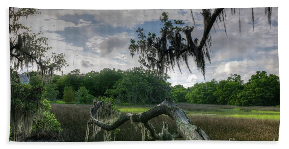 Marsh Hand Towel featuring the photograph Charleston Marsh by Dale Powell