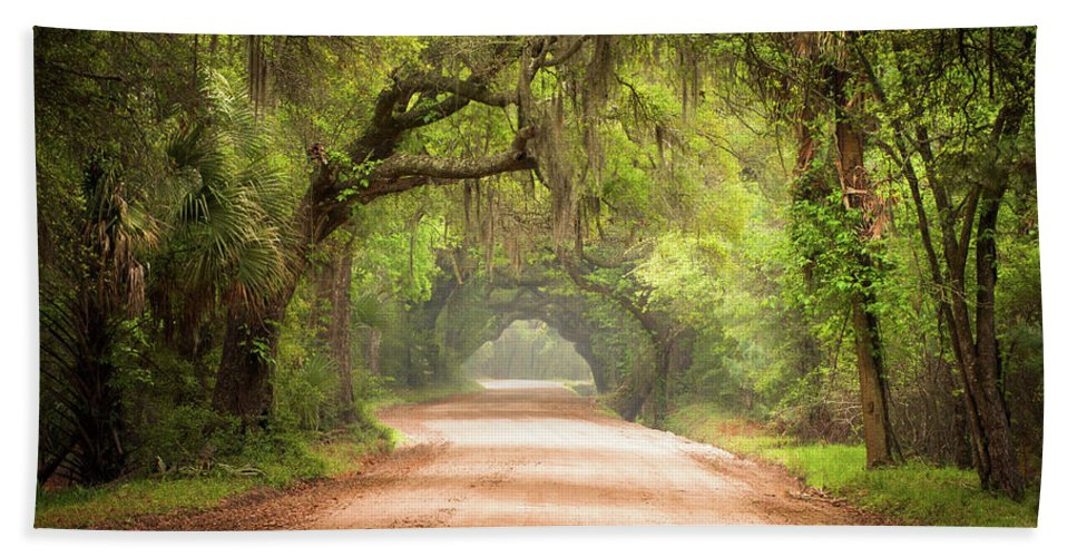 Dirt Road Bath Towel featuring the photograph Charleston Sc Edisto Island Dirt Road - The Deep South by Dave Allen