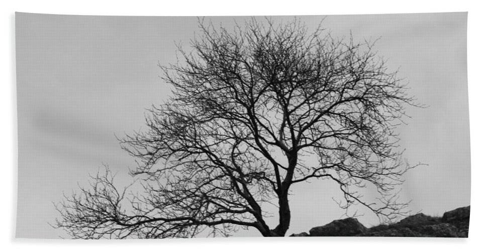 Tree Bath Sheet featuring the photograph Cheddar Gorge Tree by Lauri Novak