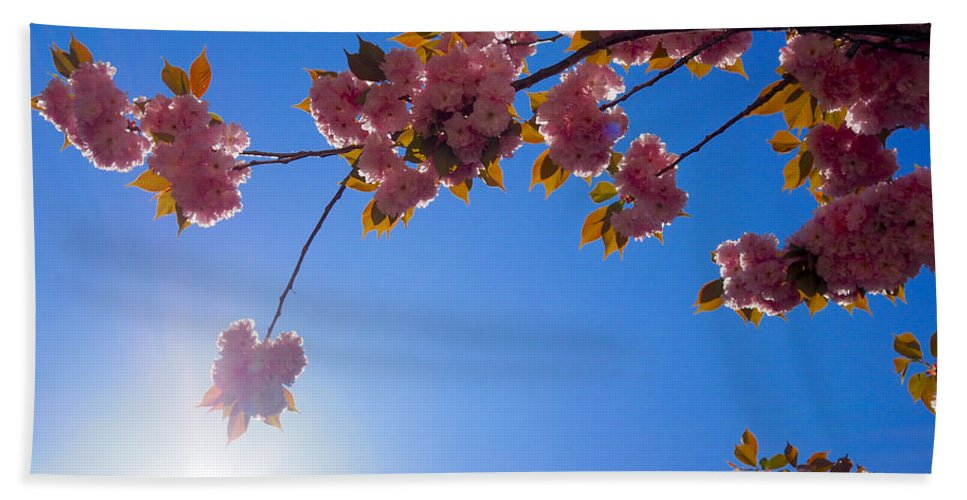 Floral Bath Sheet featuring the photograph Cherries In The Sky by Patrick Byrnes