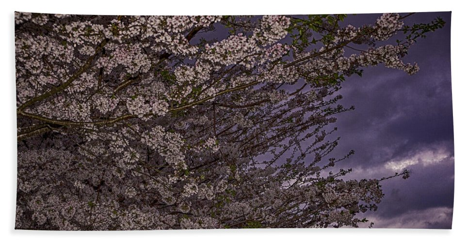Art Hand Towel featuring the photograph Cherry Blossom Sky by Pete Federico