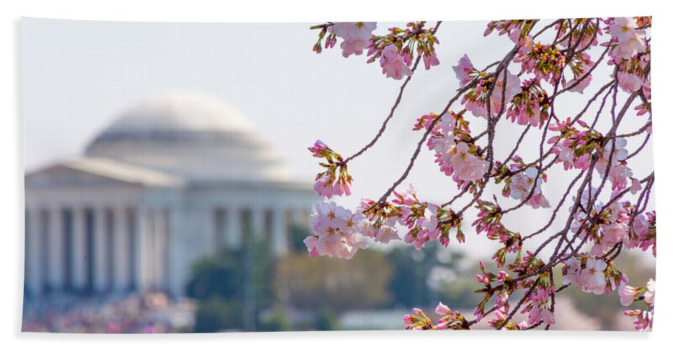 Cherry Blossom Festival Hand Towel featuring the photograph Cherry Blossoms And Jefferson Memorial by SR Green