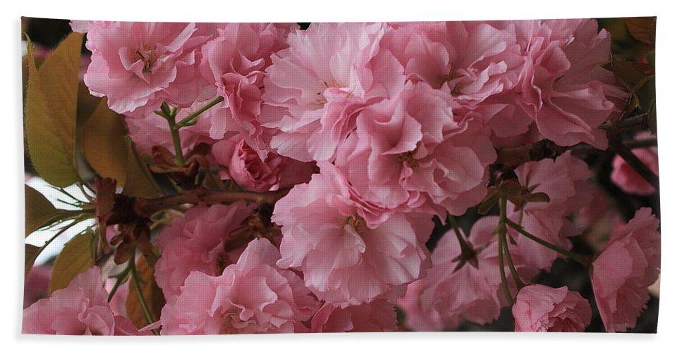 Macro Bath Towel featuring the photograph Cherry Blossoms by Dora Sofia Caputo Photographic Design and Fine Art