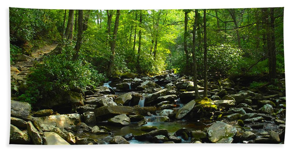 Trail Bath Sheet featuring the photograph Chimney Tops Trail by David Lee Thompson