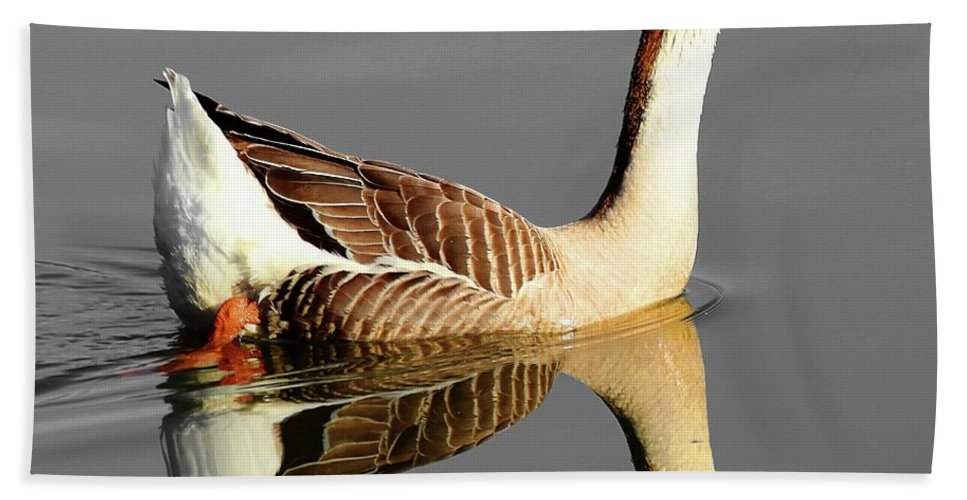 Chinese Goose Bath Sheet featuring the photograph Chinese Goose by Carol Montoya