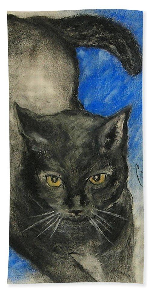 Cat Bath Sheet featuring the drawing Chloe by Cori Solomon