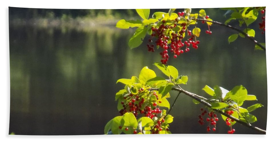 Chokecherries Hand Towel featuring the photograph Chokecherries With River Bokeh by William Tasker