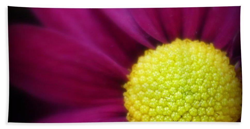 Chrysanthemum Bath Sheet featuring the photograph Chrysanthemum by Dianne Pettingell