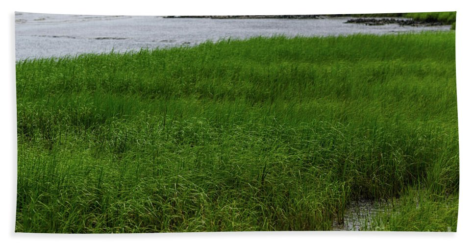 Marsh Grass Bath Sheet featuring the photograph City Marina Marsh View by Dale Powell