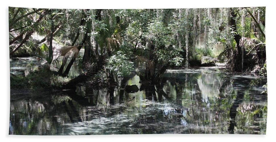 Florida Landscape Hand Towel featuring the photograph Clear Lithia Springs by Carol Groenen