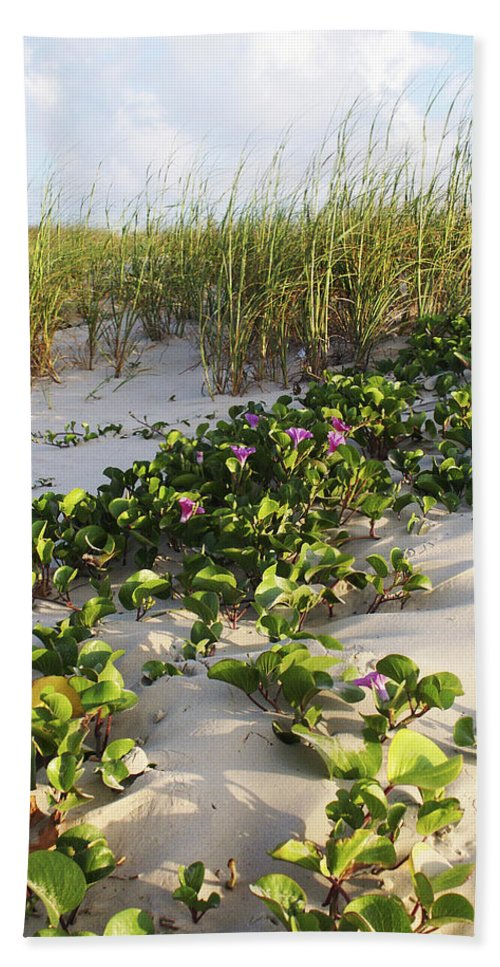 Nature Bath Towel featuring the photograph Climbing The Dunes by Marilyn Hunt