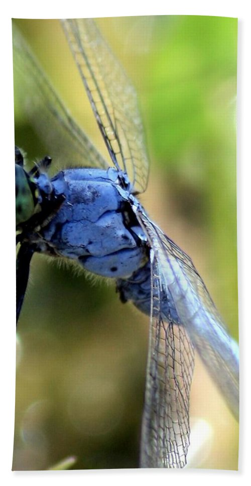 Ponds Hand Towel featuring the photograph Closeup Of Blue Dragonfly by Carol Groenen
