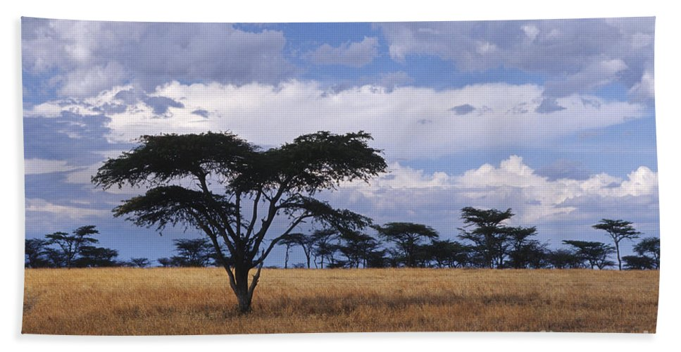 Africa Bath Sheet featuring the photograph Clouds Over The Masai Mara by Sandra Bronstein