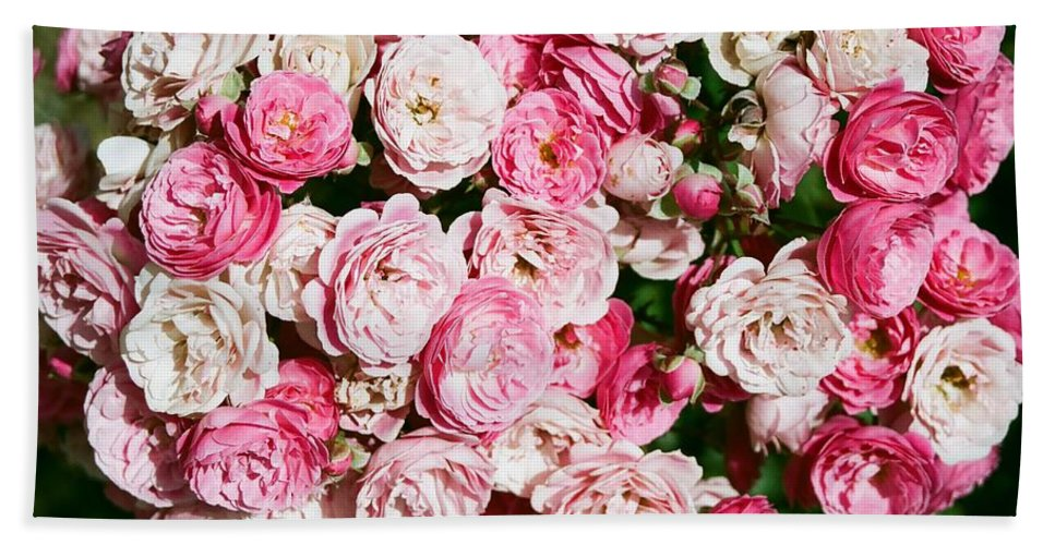Rose Bath Sheet featuring the photograph Cluster Of Roses by Dean Triolo