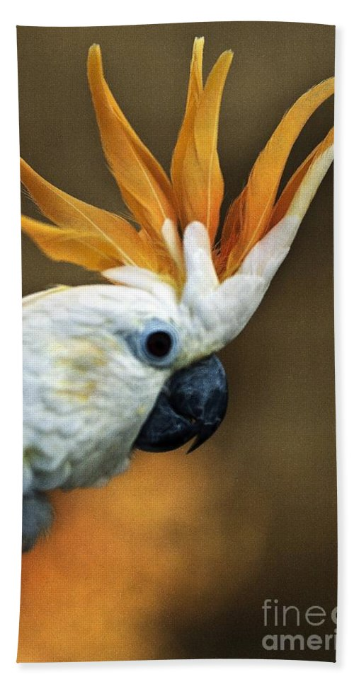 Animals Hand Towel featuring the photograph Cockatoo Show Off by Norman Andrus