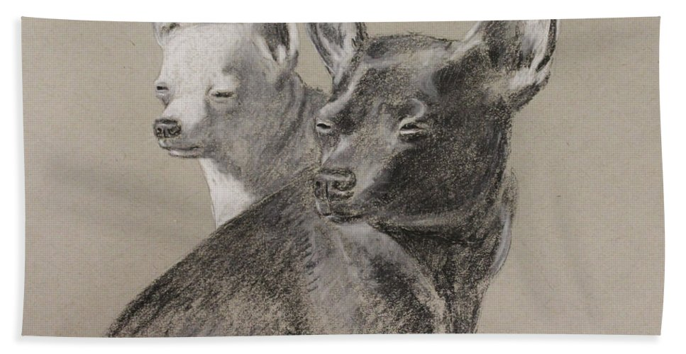 Chihuahua Bath Sheet featuring the drawing Coco And Rudy by Larry Whitler
