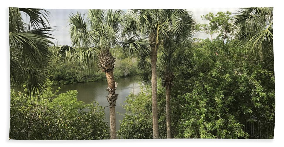 Riverside Bath Sheet featuring the photograph Cocohatchee River by Jane Merrit
