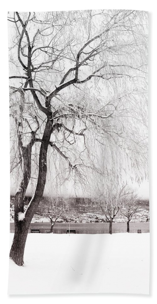 Tree Hand Towel featuring the photograph Coldness by Tara Turner